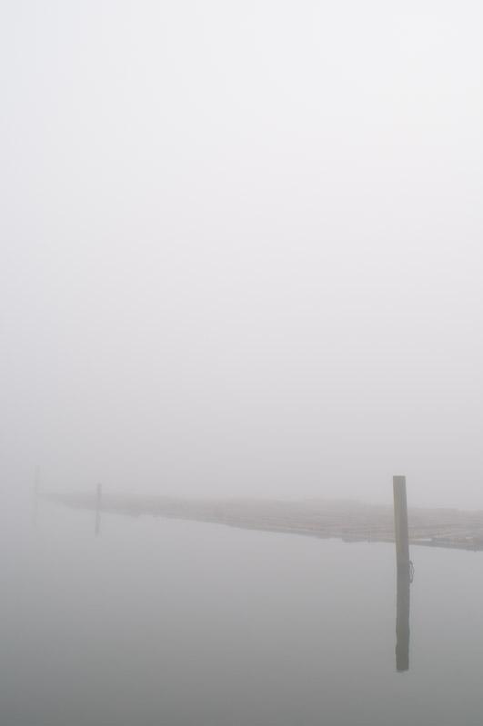 Fog1Jan13-3009804